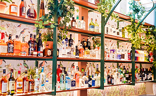 New Gin-tastic West End Bar