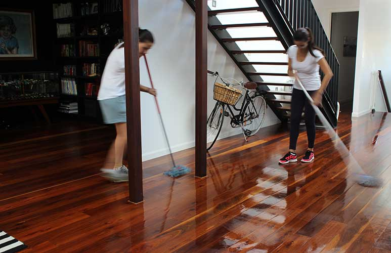Eco-Friendly House Cleaning