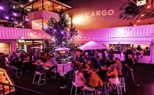 X Cargo - Brisbane's Best Chameleon