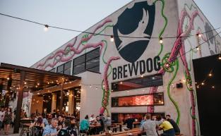 Brewilliant: Brisbane's Best Breweries